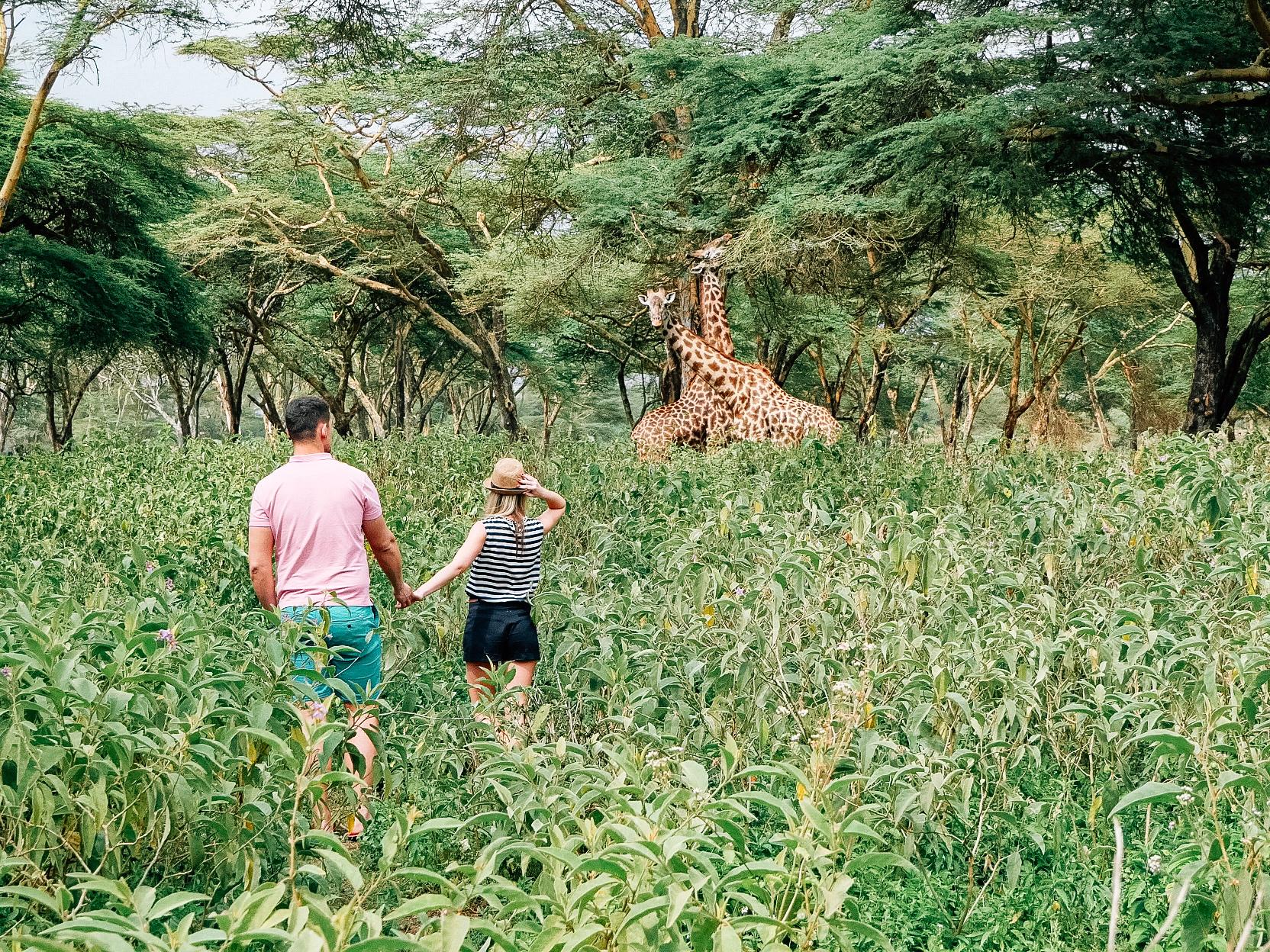 Nádherná, divoká, nespútaná - čím si nás Keňa získala? Amboseli, Lake Naivasha, Lake Nakuru